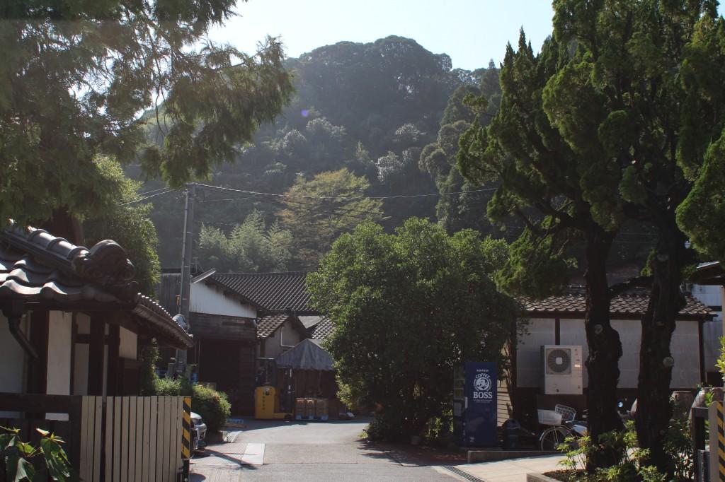 kyoyashuzo